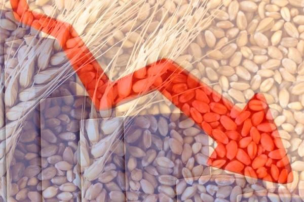 Коронавірус продовжуватиме обвалювати ціни на зернові та олійні