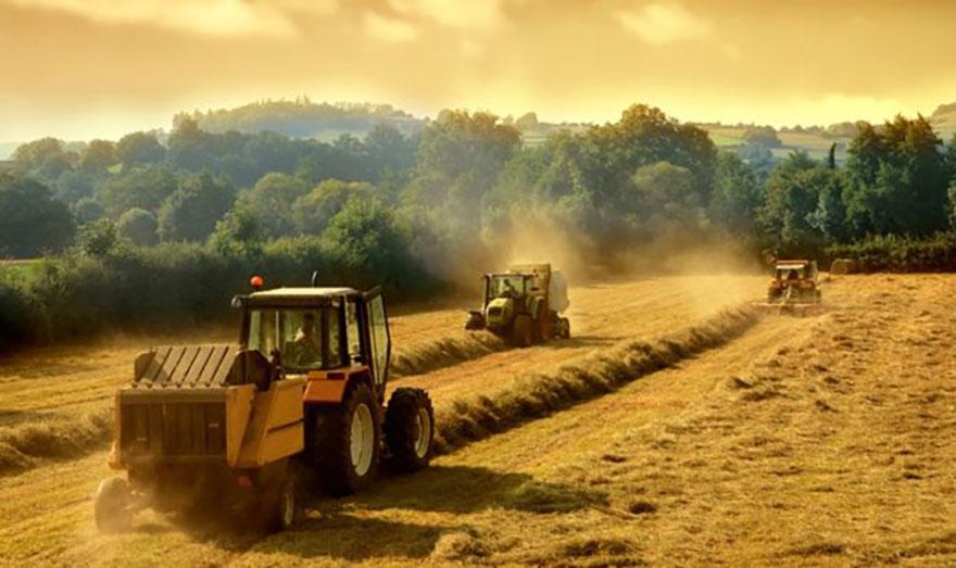 Уряд затвердив Класифікацію обмежень у використанні земель